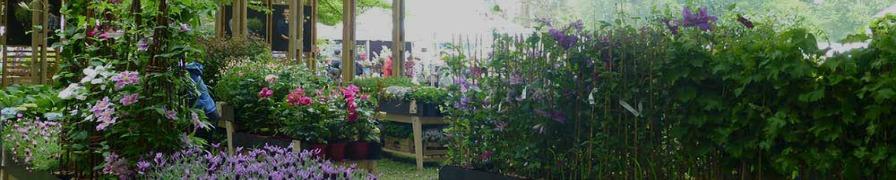 Courson - Journee des plantes chantilly ...