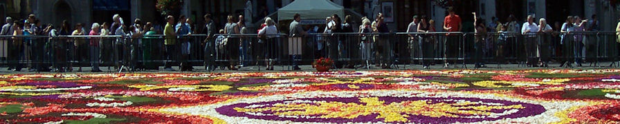 Carpet of Flowers viewing